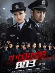 中國刑警803英雄本色