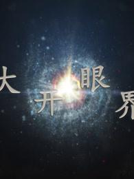 大开眼界[2019]