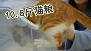 10.8斤的猫粮怎么储藏?