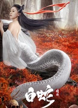 白蛇:情劫